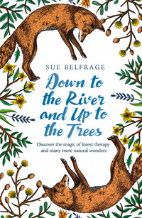Down to the river and up to the trees, discover the magic of forest therapy and many more natural wonders, Sue Belfrage