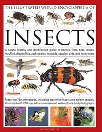 The illustrated world encyclopedia of insects, a natural history and identification guide to beetles, flies, bees, wasps, mayflies, dragonflies, cockroaches, mantids, earwigs, ants and many more, featuring 650 arthropods, including common insect and spider species, illustrated with 750 specially commissioned illustrations and photographs, Martin Walters