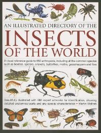 An illustrated directory of the insects of the world, a visual reference guide ..., Martin Walters