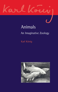 Animals, an imaginative zoology, by Karl Konig, translated by Richard Aylward