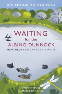 Waiting for the albino Dunnock, how birds can change your life, Rosamond Richardson, illustrations by Carry Akroyd